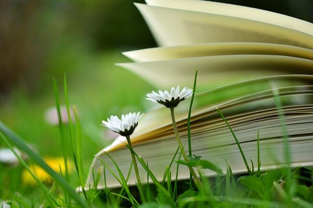 book-2304388_640.jpg