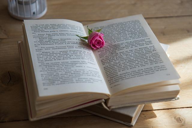 book-2408489_640.jpg